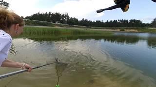 Кишкино платная рыбалка в туле