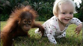 Дети и Животные! Смешное Видео про Детей и Животных! Приколы Детей и Животных