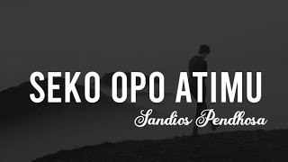 Sandios Pendhoza   Seko Opo Atimu ( Official Lyric ) || By Audio Music