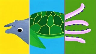 "Play ""Animal Match Up"" ! Baby Learn About Sea Animals Combined Real Animals 