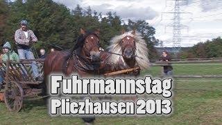 preview picture of video '28. Fuhrmannstag Pliezhausen 2013'