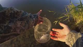 Ловля карася на пенопластовые шарики оснастка