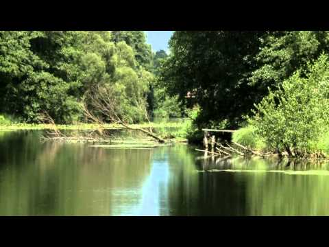 The MURA River The Cradle of Life documentary