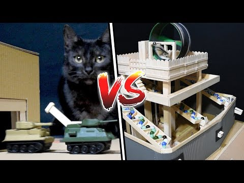 This YouTube channel makes elaborate interactive structures which are controlled by their pets. Here is a hamster defending his fortress from the cat's tank army