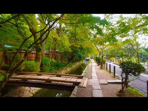 Kyoto walk - Philosopher's Walk / From Ginkakuji to Nanzenji (哲学の道 / 銀閣寺から南禅寺方面まで) - 4K