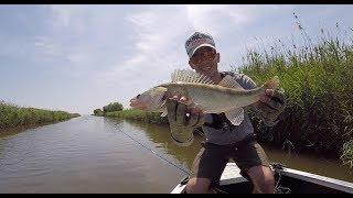 Рыбалка на лиманах азовского моря голубицкая