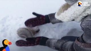 Kids Rescue Frozen Squirrel | The Dodo