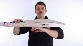 GM MAESTRO CRICKET BAT