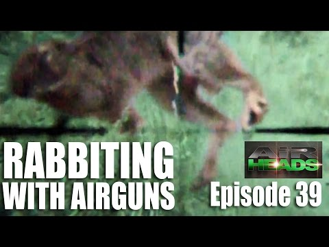 Rabbiting with Airguns  – AirHeads, episode 39