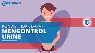 Inkontinensia Urine, Kondisi ketika Seseorang Tidak Dapat Mengontrol Buang Air Kecil