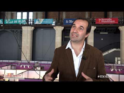 Fabrice Grenard - Les maquisards : combattre dans la France occupée