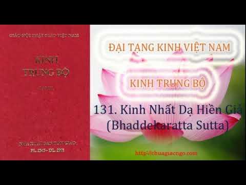Kinh Trung Bộ - 131. Kinh Nhất dạ hiền giả