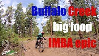 Buff Creek Big Loop (in Spanish)