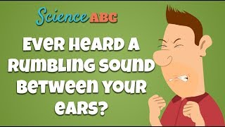Tensor Tympani Muscle: Why Do You Hear A Rumbling Sound When You Close Your Eyes Too Hard?