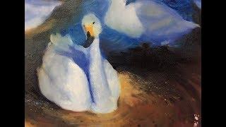 鵝群縮時。微光下的色彩。
