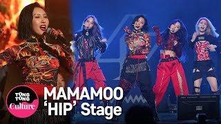 MAMAMOO(마마무) 'HIP' Showcase Stage 쇼케이스 무대 (솔라, 문별, 휘인, 화사) [통통TV]