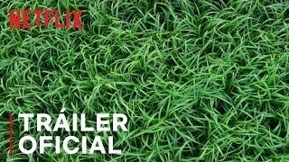 En La Hierba Alta | Tráiler Oficial | Netflix