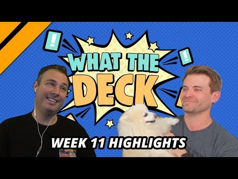 [Highlight] What The Deck w/ Brian Kibler | Ep 11 Cats vs Dogs | MTGA