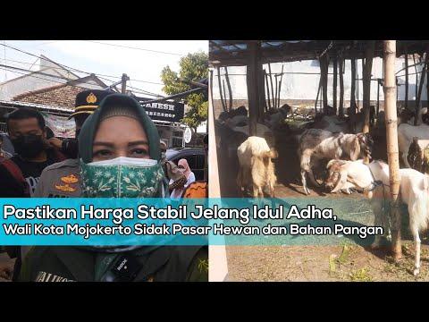 Pastikan Harga Stabil Jelang Idul Adha, Wali Kota Mojokerto Sidak Pasar Hewan dan Bahan Pangan