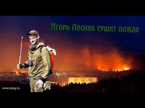 Лесной пожар на Саянской