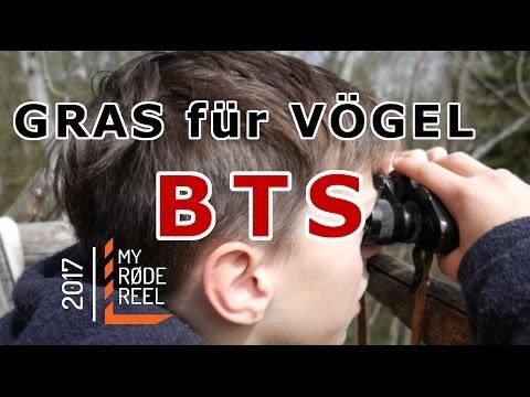 GRAS für VÖGEL-MINICK FILMS-myRODEreel2017 BTS