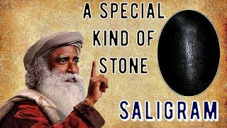 Sadhguru - Saligram is a micro cosmos in its own way.