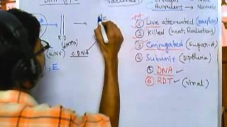 Vaccines part 6 - DNA vaccine