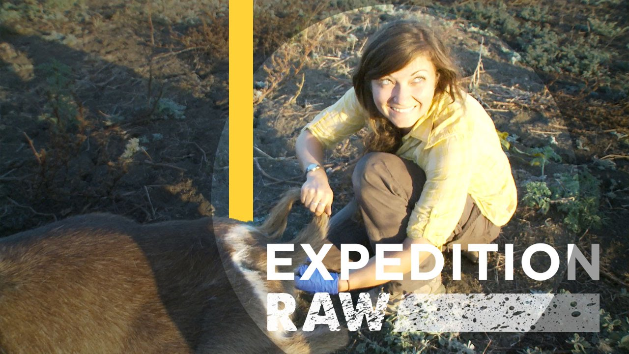 Collecting Poop to Save a National Park | Expedition Raw thumbnail