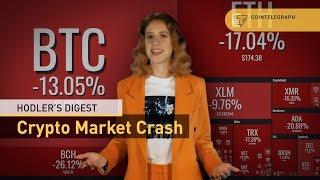 Market Crash, Bitcoin Cash Holy War | Hodler