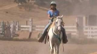 Calero Ranch Horse Camp - 2008