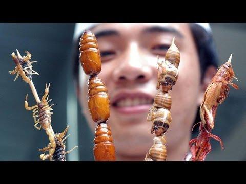 Die Säuberung des Organismus vom Ton von den Parasiten