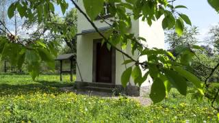 preview picture of video 'Naturpark Solling-Vogler, Lebensraum auf Kalkböden / Burgberg'