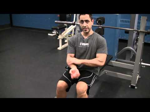 Seated Dumbbell Biceps Curl