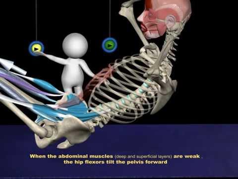 Compresse per il trattamento delle vertebre cervicali