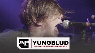Musik-Video-Miniaturansicht zu Godisalucidheartshapedbox Songtext von Yungblud