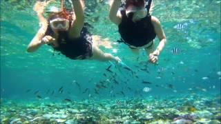 サマーリゾート沖縄/Summer Resort Okinawa