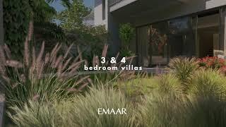 Video of Eden