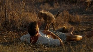 Curious Cheetah Cubs Climb on Kim | Man, Cheetah, Wild
