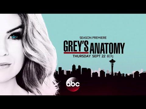 Greys Anatomy Season 13 Release Date News Reviews Releases