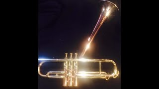 SVT Innovation is a Vintage Trumpet Shop in the Motor City!!! Detroit Michigan