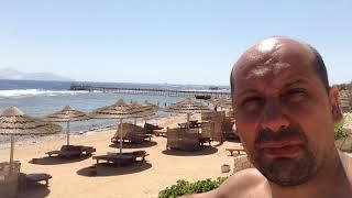 Египет отель cleopatra luxury resort 5 шарм-эль-шейх, пляж, вход в воду, риф