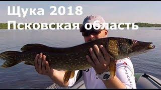 Рыбалка в псковская области
