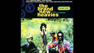 The Brand New Heavies - Never Stop (Extended Remix) (1992)