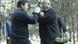 preview picture of video 'Chen Style Taiji Master Liu Chengde, in footage 'Chinese Martial Arts', part 2.'