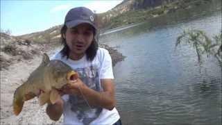 şamandırayla sazan avı float fishing for carp part1 kızılcahamamankara