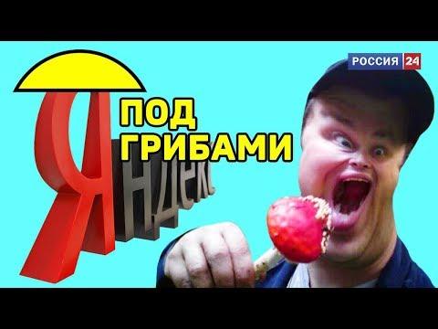 """Яндекс под грибами: 88 часов прослушивания """"Тает лед"""" // ТРЕЙЛЕР"""