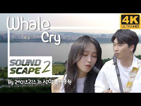 [사운드스케이프2 4K vol.4] 레이브릭스(Lay Bricks) - Whale Cry