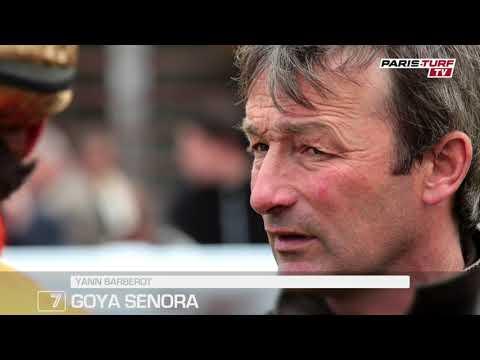 """Quinté+ dimanche 16/05 à Longchamp : """"Goya Senora (7) est en belle forme"""""""
