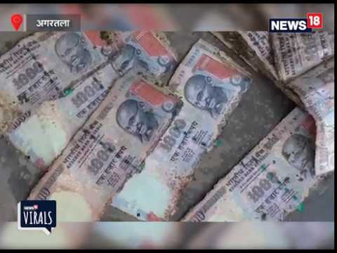 Cleaners found rupees 2 lakh of old currency from a dirty pond in Agartala
