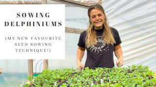 SOWING DELPHINIUM SEEDS | Foolproof Seed Starting Technique | FLOWER FARM VLOG | Kitchen Roll Method